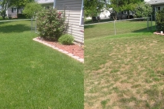 Before & After Landscaping