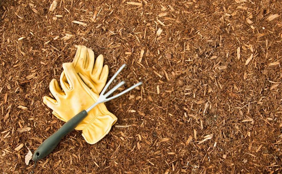 5 Advantages of Mulching