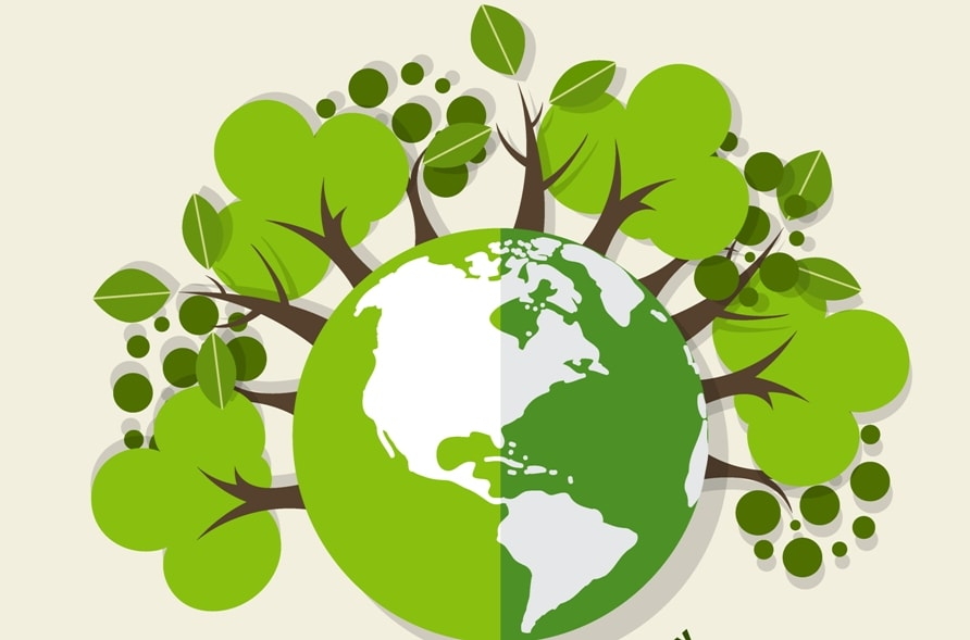 Ways to Green Your Garden on Earth Day 2020